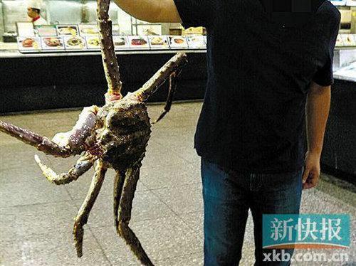吃帝王蟹疑被掉包