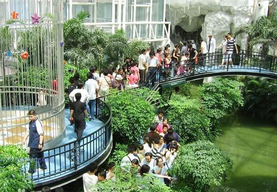 石家庄联邦·空中花园以多种热带,亚热带植物和假山塑石等雄奇景观图片